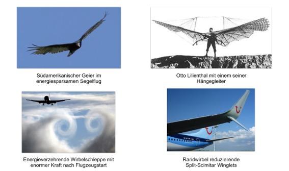 abb-1-winglets-600dpi