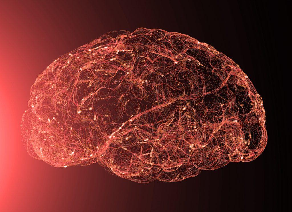KI | Menschliches Gehirn